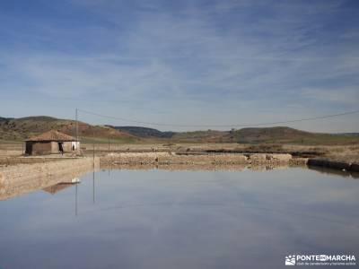 Río Salado-Salinas Imón-El Atance;la babia rutas senderismo asturias arbol de la vida celta pirine